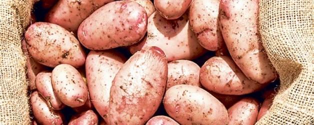 Приготовление картофеля. Популярные рецепты