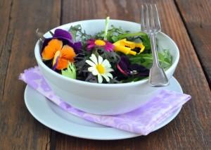 Рецепты из крапивы