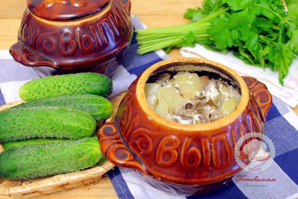 Молодая картошка с грибами в горшочках